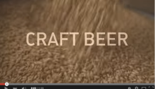 craft beer, budweiser spoof