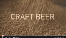 craft beer, budweiser spoof
